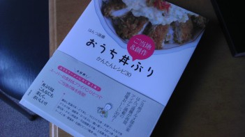 Donburi cookbook!