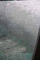 Rain on the skylight