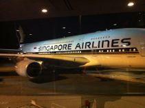 Giant Plane!