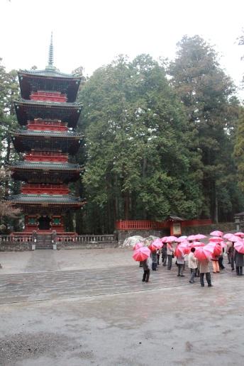 Red Umbrellas Gather