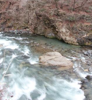 Rapids again