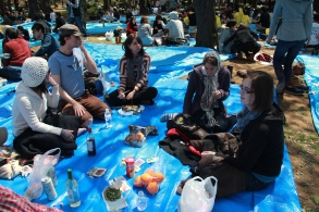 Friends at Hanami 3
