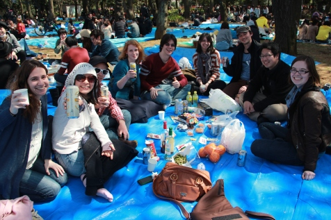 Friends at Hanami 5