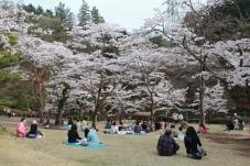 Utsunomiya Park
