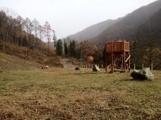 A Lone Hillside