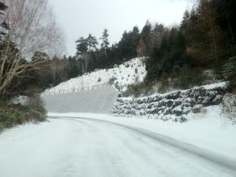 Snow Travels