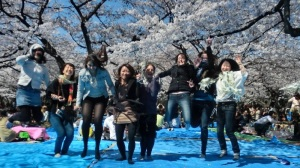 Hanami Friends