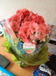 Byebye Flowers