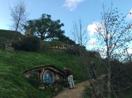 Hobbit banquet - Hobbit holes