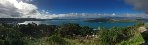 View from Mt. Victoria